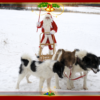 Jõuluvana Taadu 4