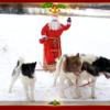 Jõuluvana Uudu 4